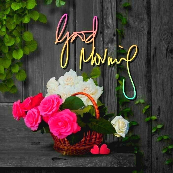 ᐅ Top 55 Good Morning Images Hd Morning Pictures Wishes
