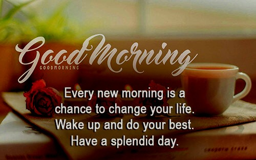 Beautiful Good Morning Quotes Good Morning Quotes