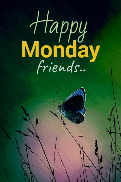 ᐅ Top 30+ Happy Monday Images, Pictures, Photos GIFs